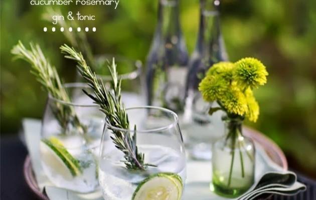 gin tonic pp