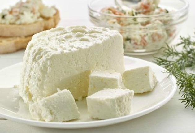 ppal queso fresco cheese maker lekue