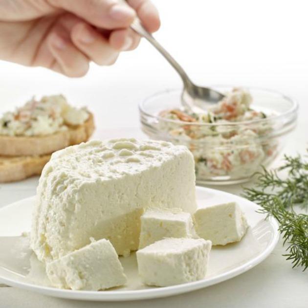 queso fresco cheese maker lekue